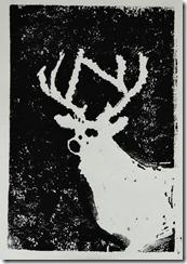 prints and dog 010