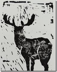 prints and dog 018