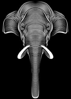 Cross Contour elephant