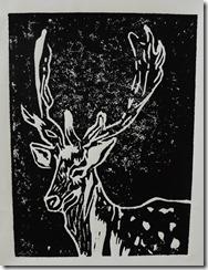 Prints 024