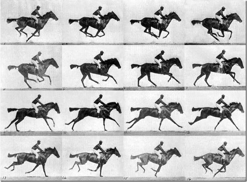Racehorse 5 Muybridge_race_horse_gallop
